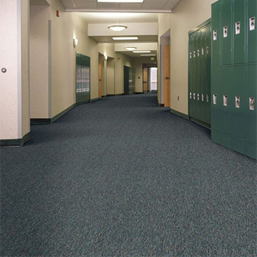 Philadelphia Commercial Carpet | Miami, FL